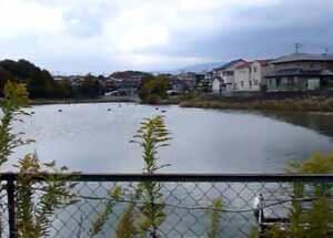 最初のA君が亡くなった熊取町の池。Aはよくこの池の周辺で仲間とシンナーを吸っていたという。画像出典:youtube投稿