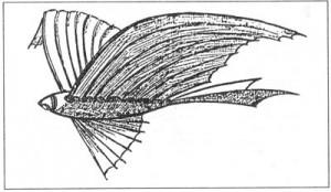 こちらはテキサス州フォートワースで目撃された幽霊飛行船。 気嚢のないそのフォルムからしてエアシップと言うよりはエアプレインのようにも見える。 ダラス・モーニングニュース紙18974月16日付。