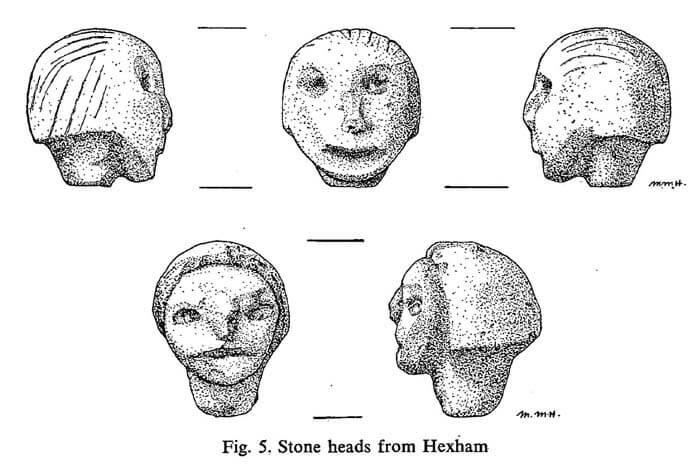 博物館のイラストレーター、マリー・ハレルによって描かれたヘクサム・ヘッズ図。 上段の3つが『ボーイ』で、下段の2つが『ガール』と呼ばれた頭像となる。 ガールは眼球が突出気味であると観察されているが、図では良く判らない。