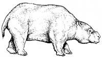 pumapunku025